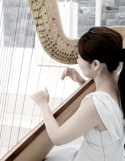 A HARP PLAYER